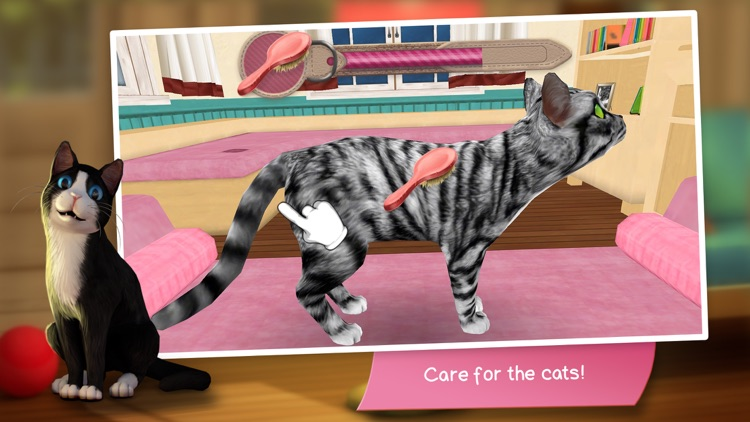 CatHotel - Care for cute cats