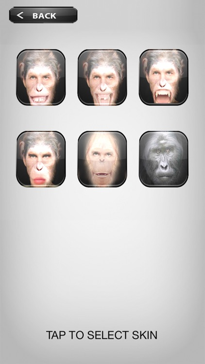 MonkeyBooth - Morphing faces into an ape, monkey or chimp