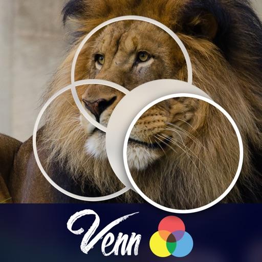 Venn Lions: Overlapping Jigsaw Puzzles
