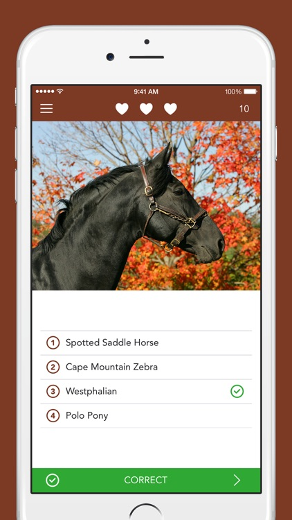 iKnow Horses 2 PRO - The Reference Work screenshot-3