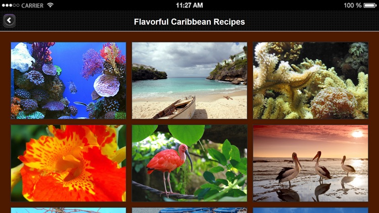 Caribbean Recipes from Flavorful Apps® screenshot-3