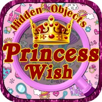 Codes for Hidden Objects:The Princess Wish Hack