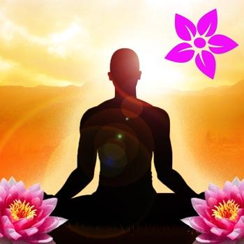 spreuken en wijsheden leven 1500 wijsheden voor een gelukkig leven   Beroemde citaten  spreuken en wijsheden leven