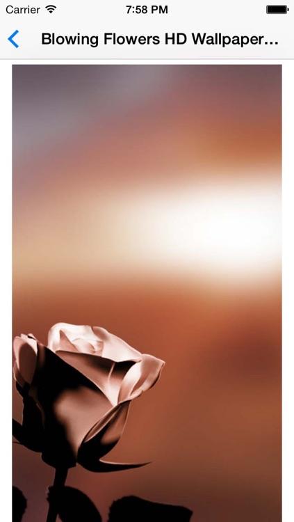 Blowing Flowers HD Wallpaper For Whatsapp