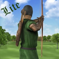 Codes for Sherwood Forest Archery LITE Hack