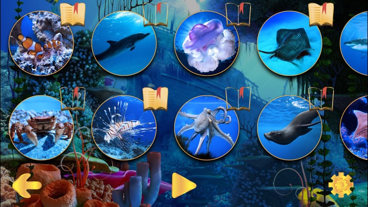 Our World - kids Learning games and puzzle for kids - Free screenshot-3