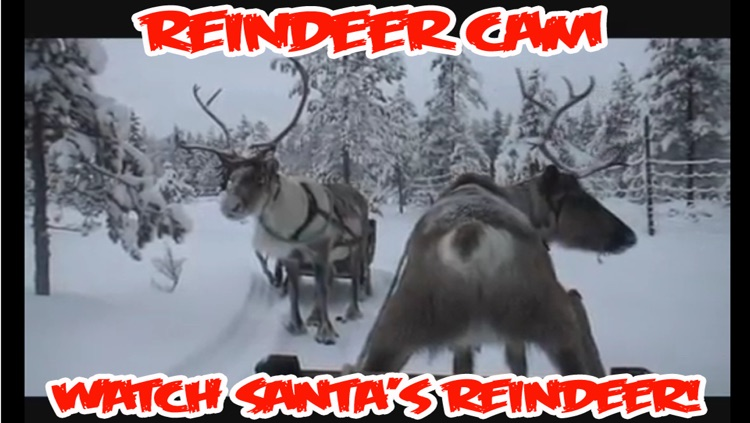 ReindeerCam - Watch Santa's Reindeer & More! screenshot-2