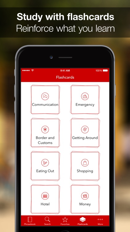 SpeakEasy Russian ~ Offline Phrasebook and Flashcards with Native Speaker Voice and Phonetics screenshot-4