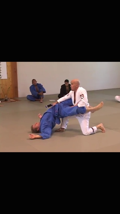 Brazilian Jiu Jitsu Seminars: Year One screenshot-4