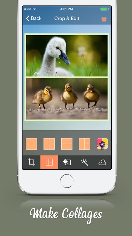 Cropic - Crop Photo & Video Insta-size Layout screenshot-4