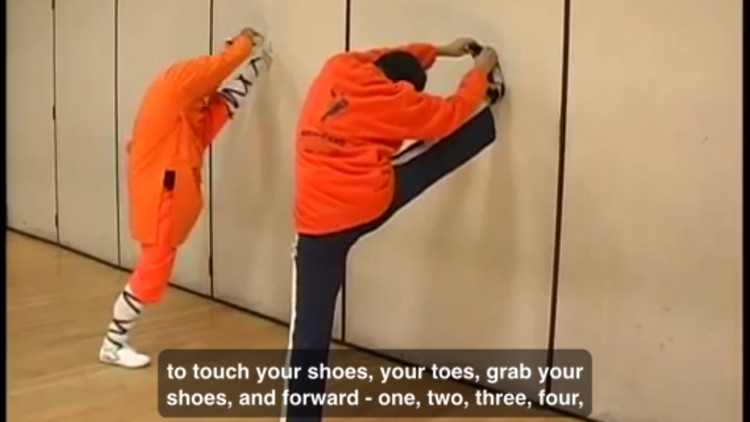 Shaolin Kung Fu Training screenshot-4