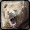 Grizzly Bear Hunt-ing Bullet Juggle Game - iPhoneアプリ