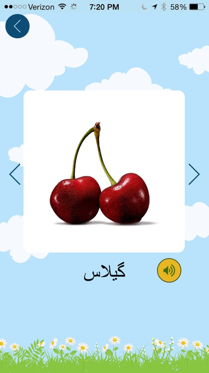 Farsi Flash Cards - فلش کارت فارسی