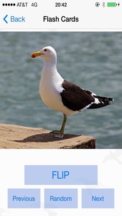 Bird Watching Guide & Identification screenshot-3