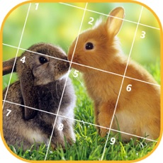 Activities of Jigsaw Puzzle - Animals