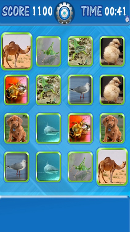 Kids Can Match - Animals , vocal memory game for children HD screenshot-2