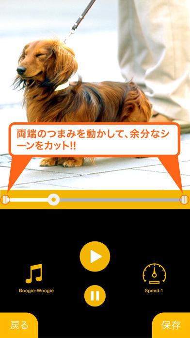 リバースカメラ FREE -逆再生アプリ- - 窓用