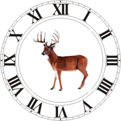 Best Hunting Times Hd app review