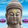 Weisheiten aus Fernost - Spirituelle Zen-Zitate & Lebensweisheiten: Glücklich und entspannt wie Buddha
