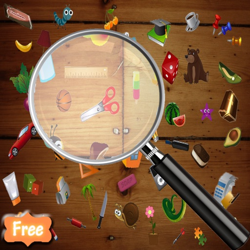 Hidden Object : Can You Find It ?