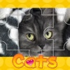 Cats Photo Puzzle(Сat Jigsaw Puzzles)