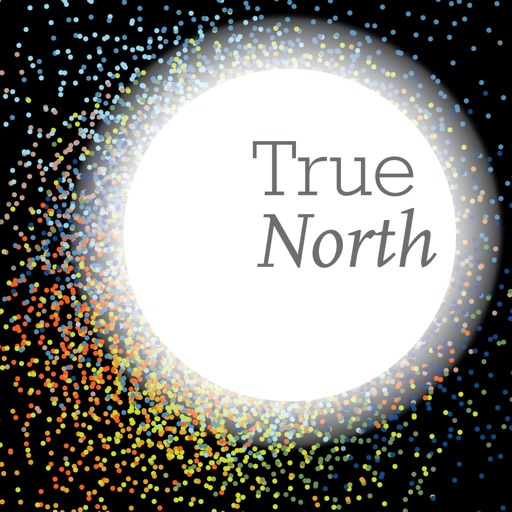 Booz Allen True North