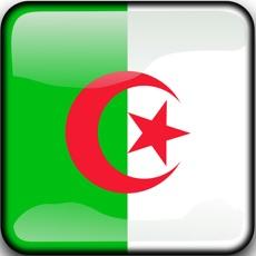 Activities of Algerian Patience Solitaire