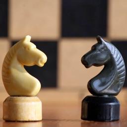 Chess Master Class