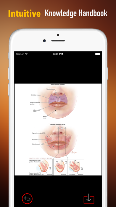 Lip Injection 101: Reference of Cosmetic Surgery and Video Guide | App  Price Drops