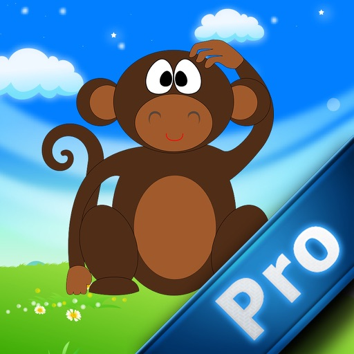 Boom Monkey Pro