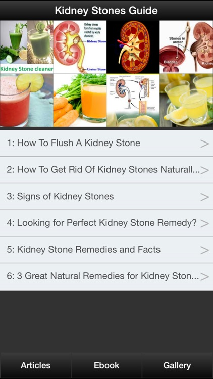 Kidney Stones Guide - How To Prevent & Treat Kidney Stones Symptoms