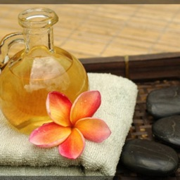 Massage Therapy 101: Therapist Tips with Tutorial Video