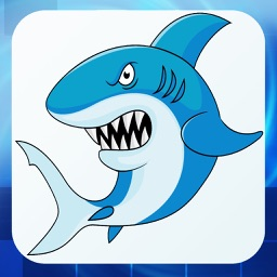 Shark Fishing - Join The Real Ninja Kings