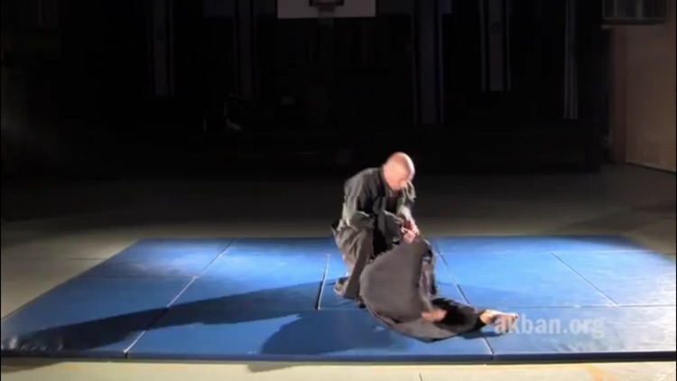 Ninjutsu screenshot-4