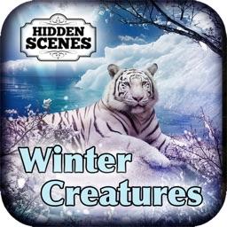Hidden Scenes - Winter Creatures