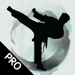 跆拳道速成—视频教学