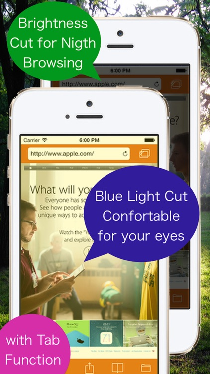 "Brightness and Blue Light Cut Browser ""AceColor"""