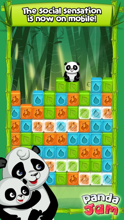 Panda Jam screenshot-0