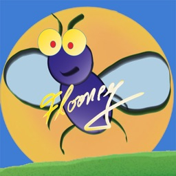Flooney the Fly Catch me if you can