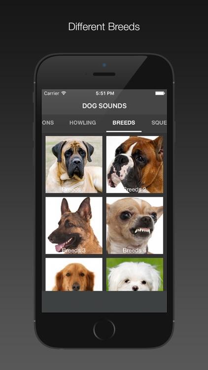 Dog Sounds - Free screenshot-3