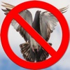 点击获取Pigeon Repeller