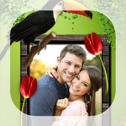 Bird Photo Frames - Make awesome photo using beautiful photo frames