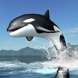 Orca Survival Simulator