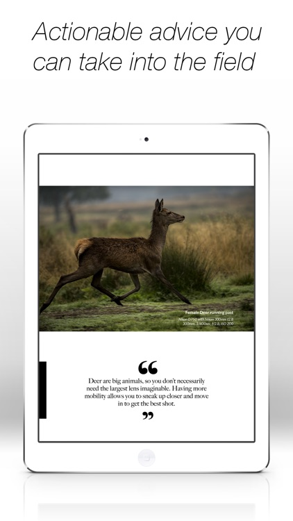 Wildlife Photographic Magazine screenshot-3