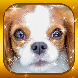Jigsaw Puzzles - Cute Puppy Love Baby Animal Game