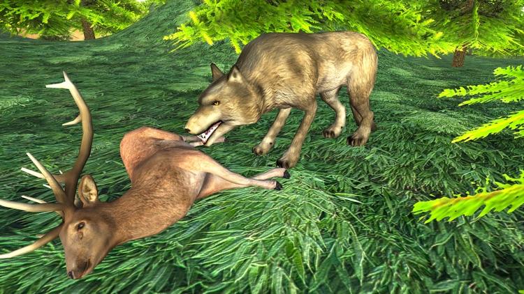 Wild Wolf Attack Adventure 3D - Wild  Beast wolf Revenge From Animals