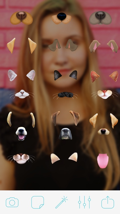 Photo Doggy Face Photo Booth