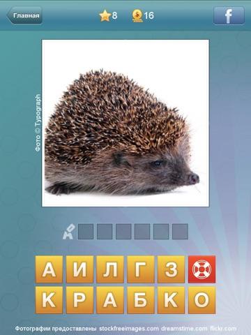 Что за слово? - 4 фотки 1 слово Скриншоты6