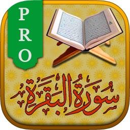 Surah No. 02 Al-Baqarah