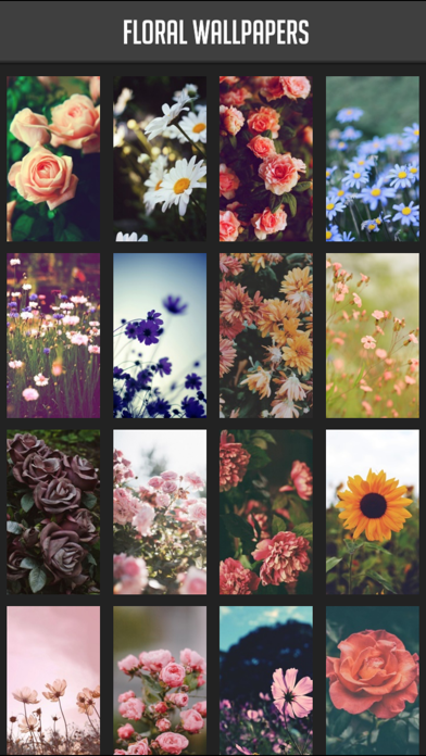 Floral Wallpapers screenshot one